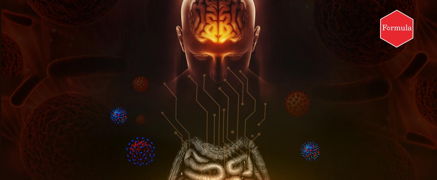 קשר בין מוח למעיים